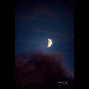 Photo by Ashley Brandenburg Photography